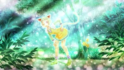 「光の森の猫」01